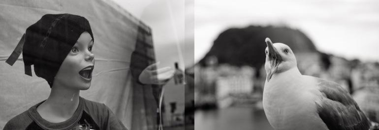v) Utstillingsdukke. Leica M8, Summicron-M 35mm 2.0 ASPH h) Havmåse. Leica M8, Summicron-M 35mm 2.0 ASPH