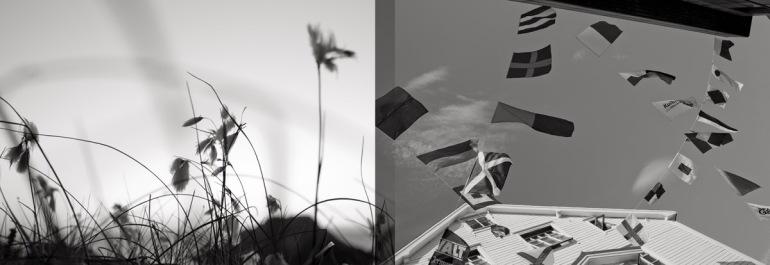 v) Myrull. Leica M8, Summicron-M 50mm 2.0 h) Signalflagg. Leica M8, Summicron-M 35mm 2.0 ASPH