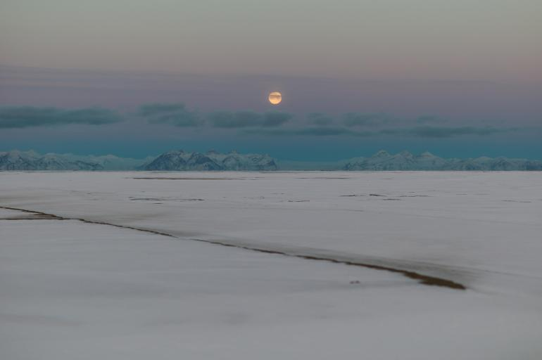 Måne over adventfjorden