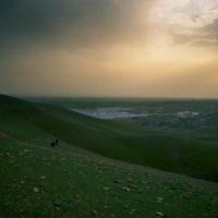 Et folk på flukt - en reportasjereise i Nord-Irak for Morgenbladet, av Eivind H. Natvig