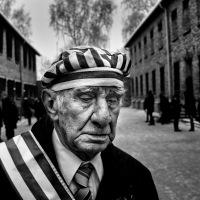 Auschwitz-Birkenau prosjektet, av John T. Pedersen