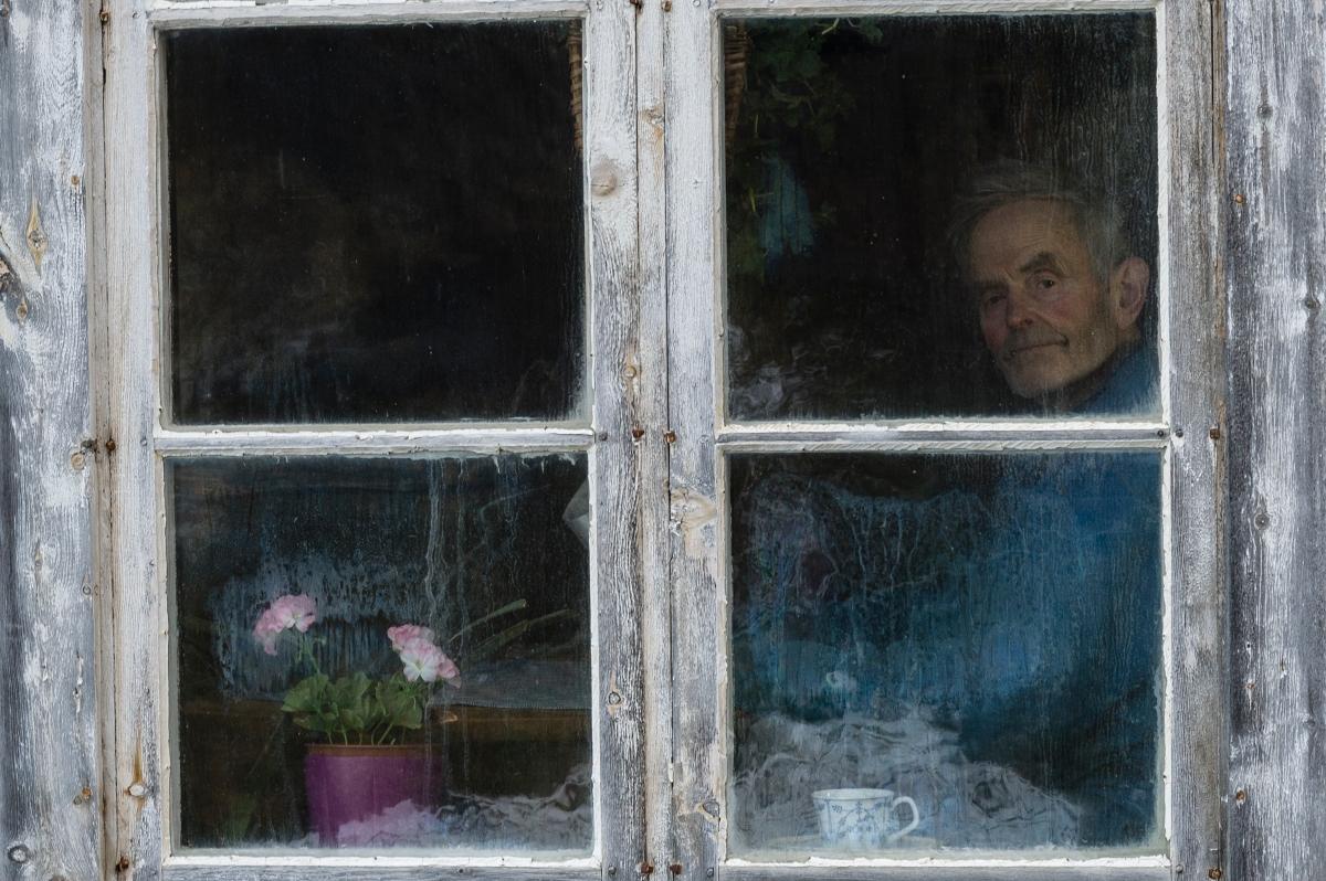 Ola Haugen, av Nils Thune